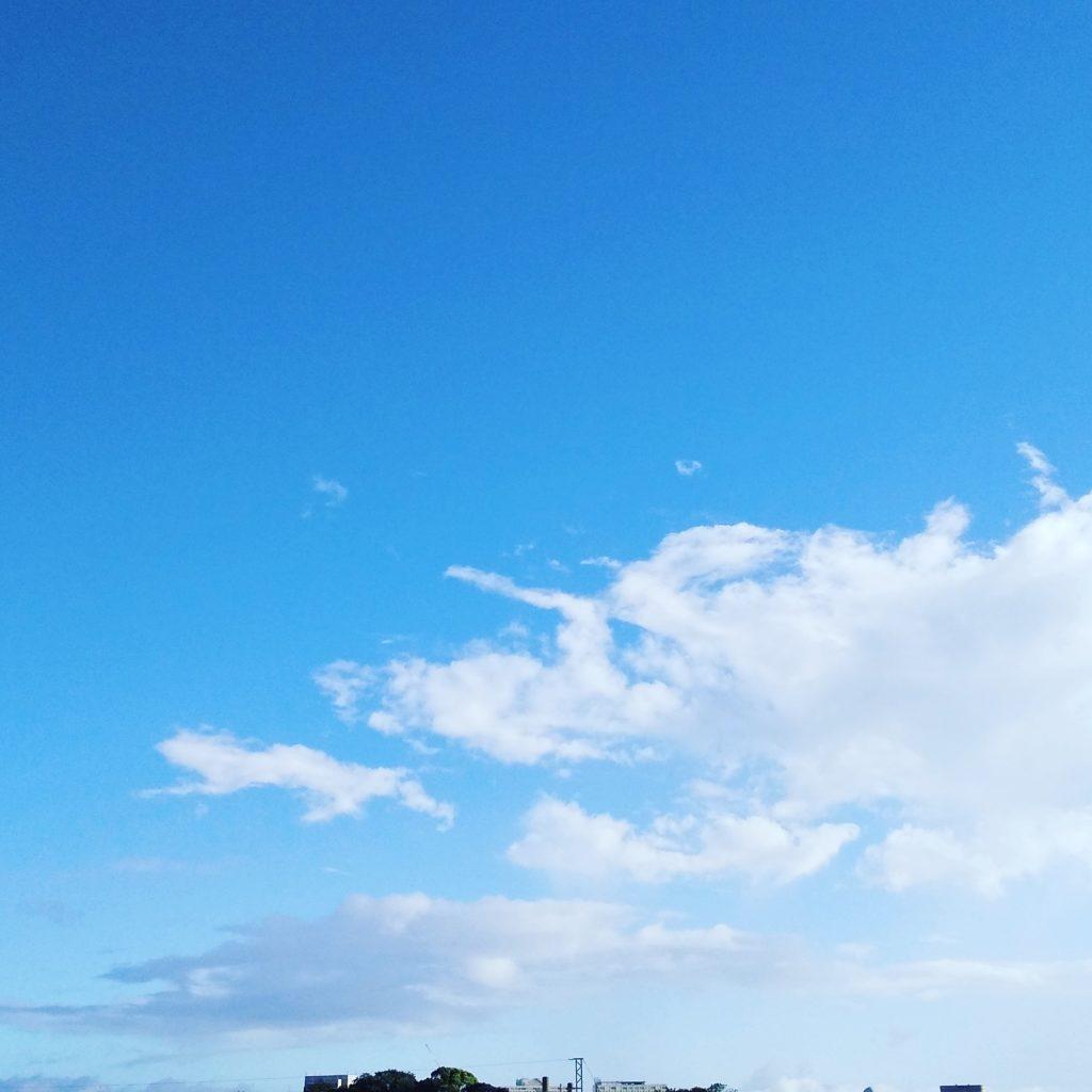 朝散歩の空